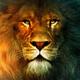 Аватар пользователя flash177