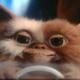 Аватар пользователя greyjonny