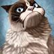 Аватар пользователя XomNonNom