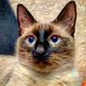 Аватар пользователя tenheaven