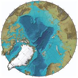 Arktika55