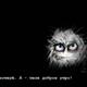 Аватар пользователя Kalimako