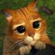 Аватар пользователя lenasheff