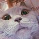Аватар пользователя takcuk