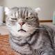 Аватар пользователя DimonstrMi16