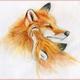 Аватар пользователя Knitty