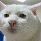 Аватар пользователя xM2k