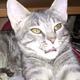 Аватар пользователя Dmitriy100384