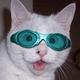Аватар пользователя Maksimka74