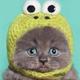 Аватар пользователя divanch