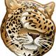Аватар пользователя mrrrLeopard