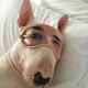 Аватар пользователя JPSullivan39