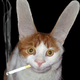 Аватар пользователя Instru