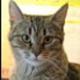 Аватар пользователя abcd51
