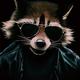 Аватар пользователя CleverRaccoon