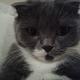Аватар пользователя serj1226