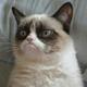 Аватар пользователя HappyDude