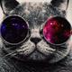 Аватар пользователя bobcat077