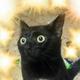 Аватар пользователя Paullie