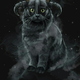 Аватар пользователя Afanasia