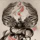 Аватар пользователя DarkFenix139