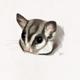 Аватар пользователя shandonbell