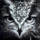 Аватар пользователя AnoONim