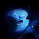 Аватар пользователя SlySharp