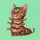 Аватар пользователя YaYa