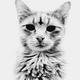 Аватар пользователя sergiham