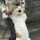 Аватар пользователя RoGeRcool74