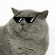 Аватар пользователя muxto