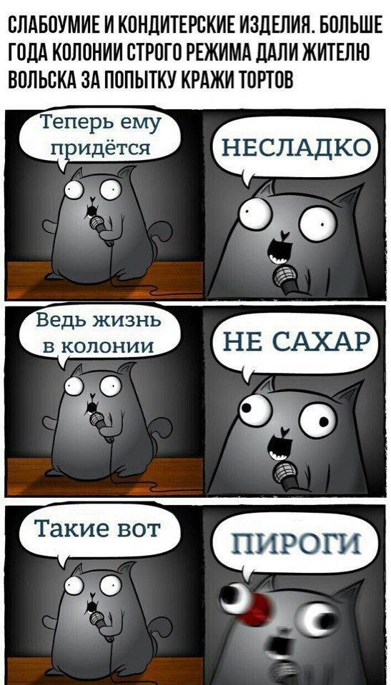 Хотя нет мем кот