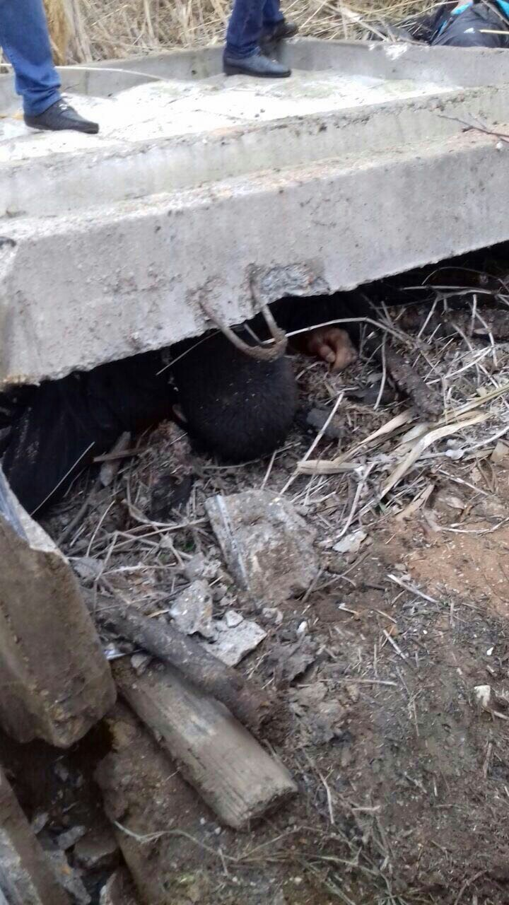В Астрахани обстреляли сотрудников Росгвардии