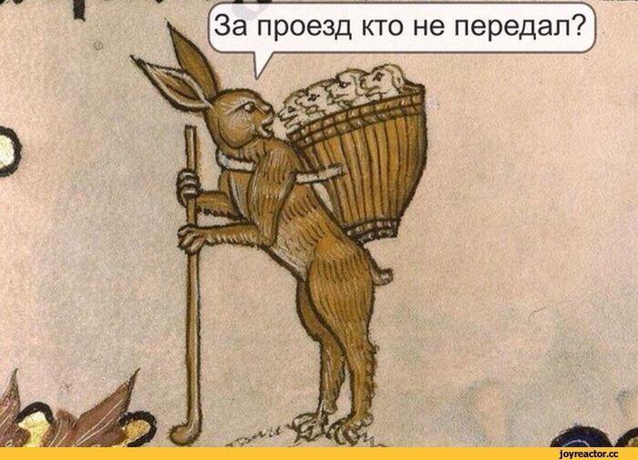 https://cs9.pikabu.ru/images/big_size_comm/2017-11_2/1509993961623689009.jpg