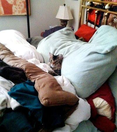 Муж спит а во мне хозяйничает чужой член фото 646-295