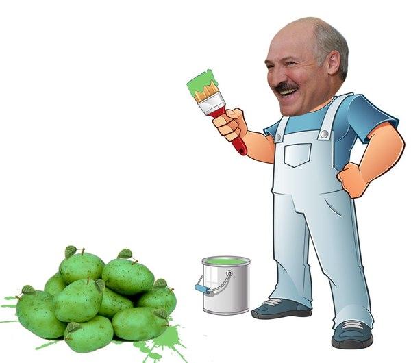 Яблоки Яблоки, Буларусия, Лукашенко, Картофель, Лентач
