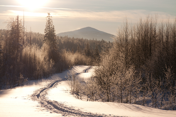 Картинки по запросу ...а снег падал буднично... тихо... неспешно...