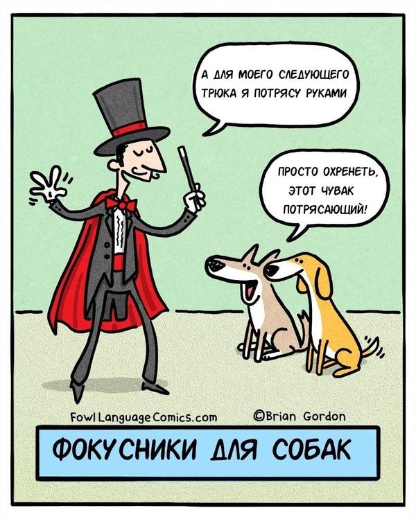 Фокусники для собак Комиксы, Юмор, Собака, Фокусник, Фокус