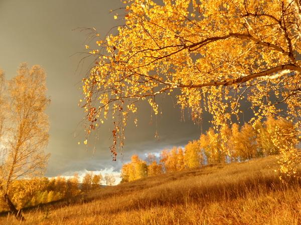 фото золотая осень башкортостан