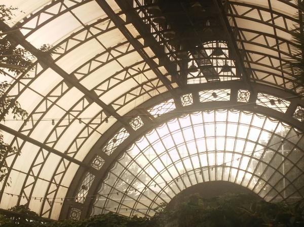 Викторианский ботанический садъ Ботанический сад, Санкт-Петербург, 19-20 века, Первый пост