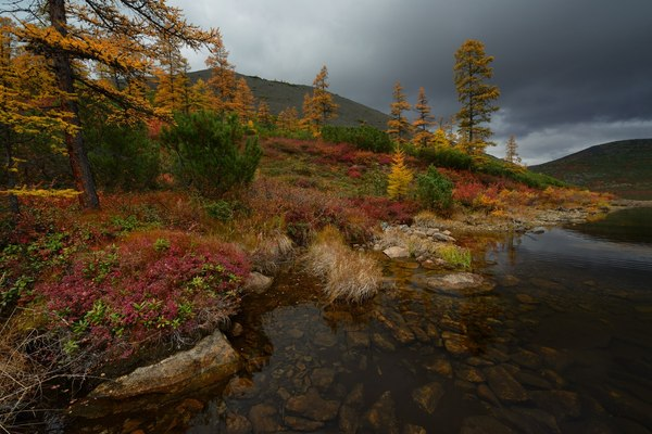 Магаданская область Магаданская область, Россия, Фото, Природа, осень, надо съездить, пейзаж, длиннопост
