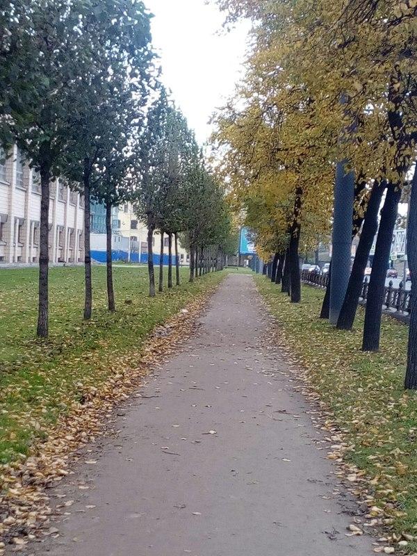 Осень(2) Осень, Санкт-Петербург, Площадьмужества