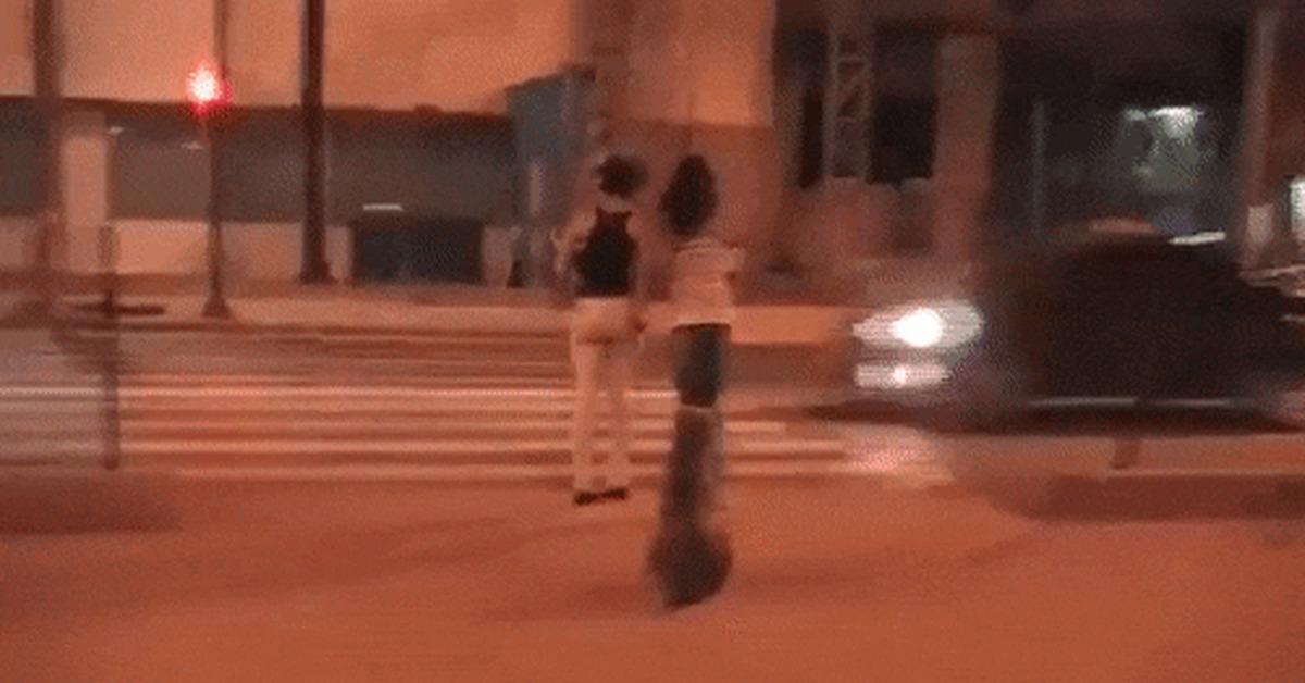 Гифка улитка переходит пешеход