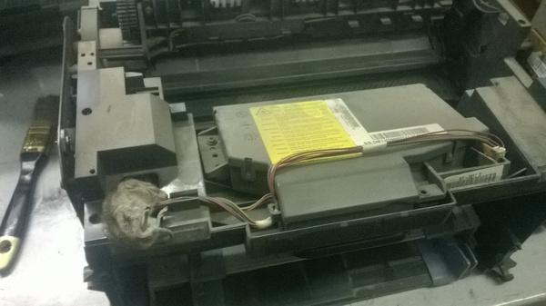Принесли принтер на ремонт. Оказалось что мертв не только аппарат... Принтер, Смерть, Глупость, Животные, Samsung, Не еда