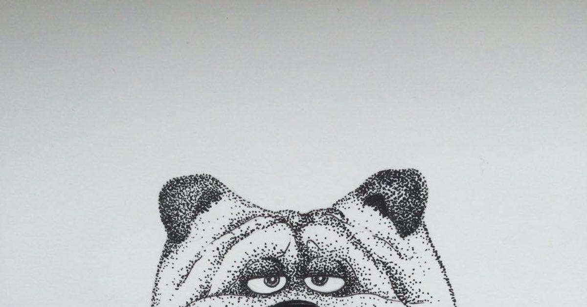 картинки мопс нарисованные