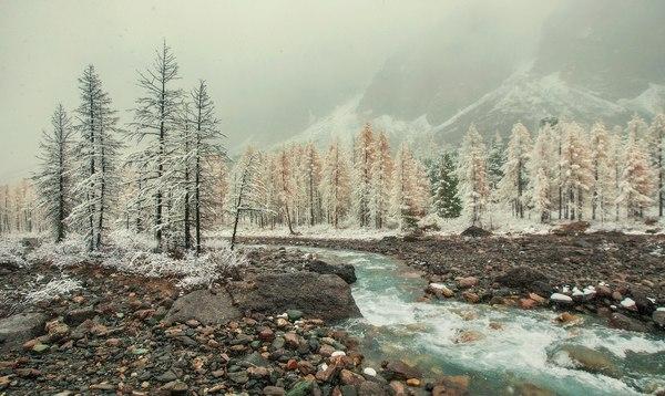 Верховья реки Актру Актру, Алтай, Россия, Осень, Природа, Надо съездить, Фото, Снег, Длиннопост