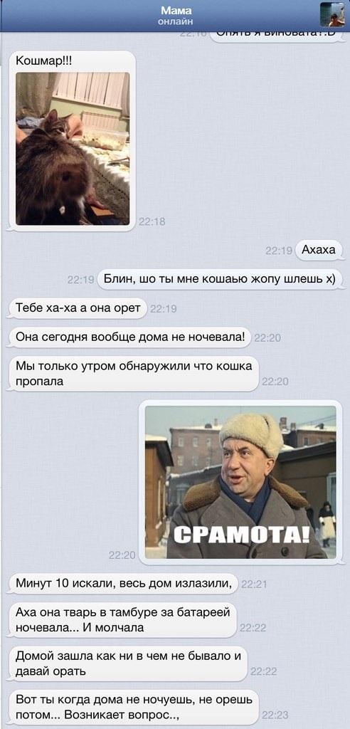 Переписка с мамой)