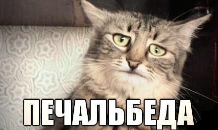 Троян-шифровальщик лишил зарплаты казанских полицейских мвд, троян, криптор, полиция, казань