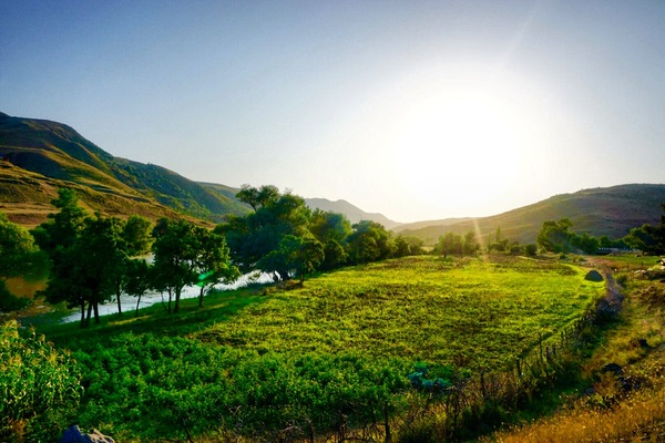 Немного солнечной Грузии Грузия, Лето, Фото, Длиннопост